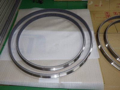 A Bearing for Over Sized (Φ1000mm) Pump, Plastic, Metal, Assembly